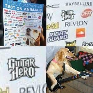 guitar hero dog testing meme