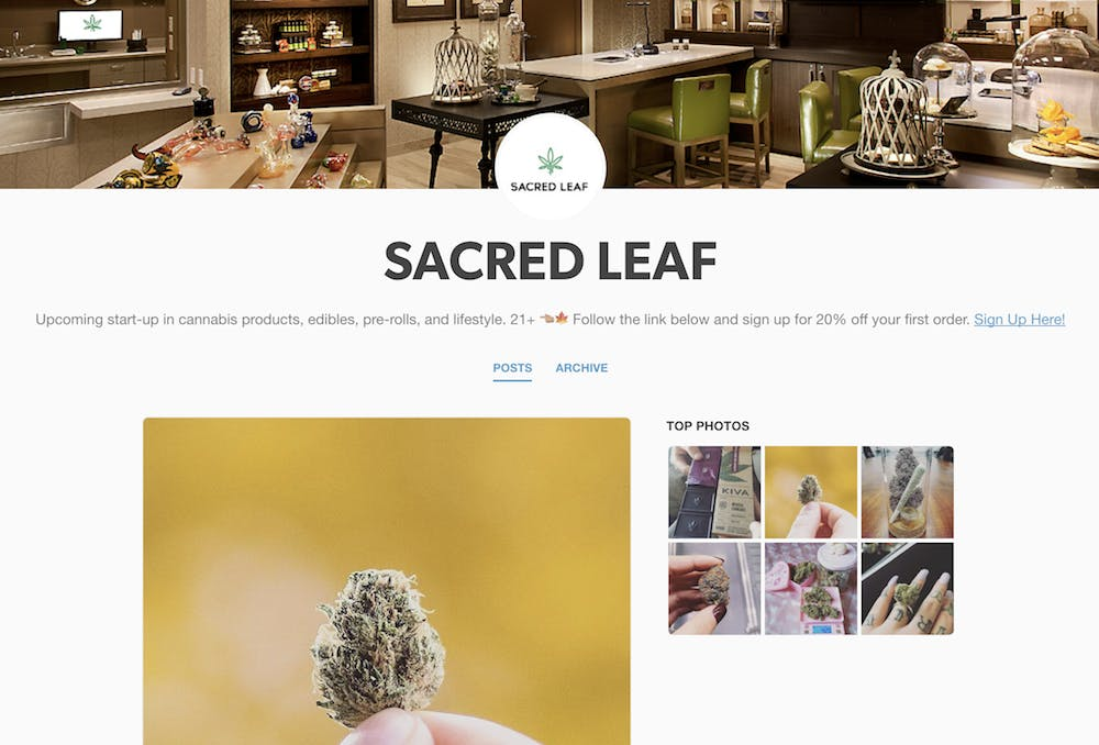 tumblr weed : Sacred Leaf