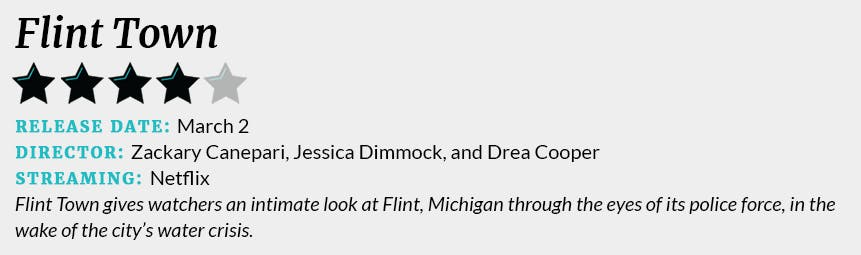 Flint Town review box