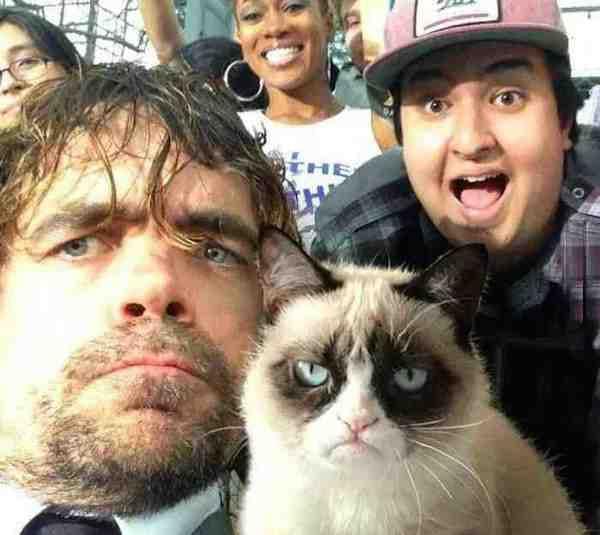 peter dinklage grumpy cat