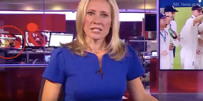 porn in background of bbc