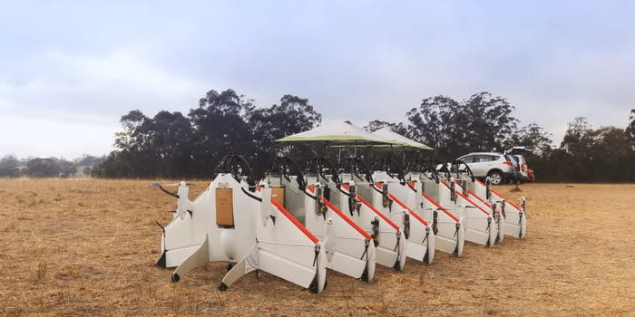 alphabet x project wing drones for burritos