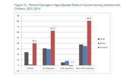 VA Suicide Report