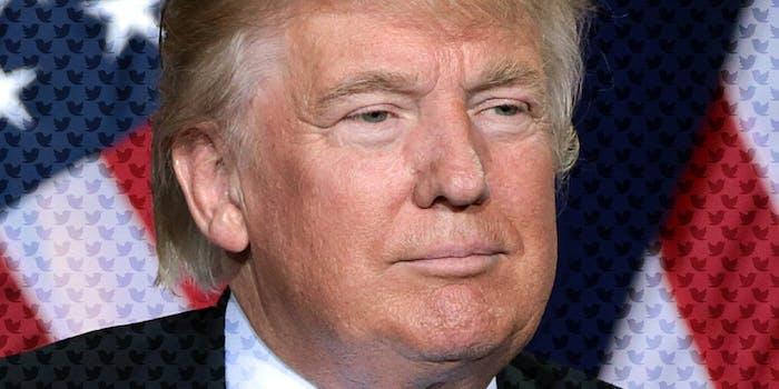 Donald Trump with Twitter bird logo pattern