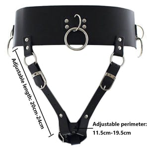 BDSM toys harness