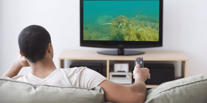 live_tv_streaming