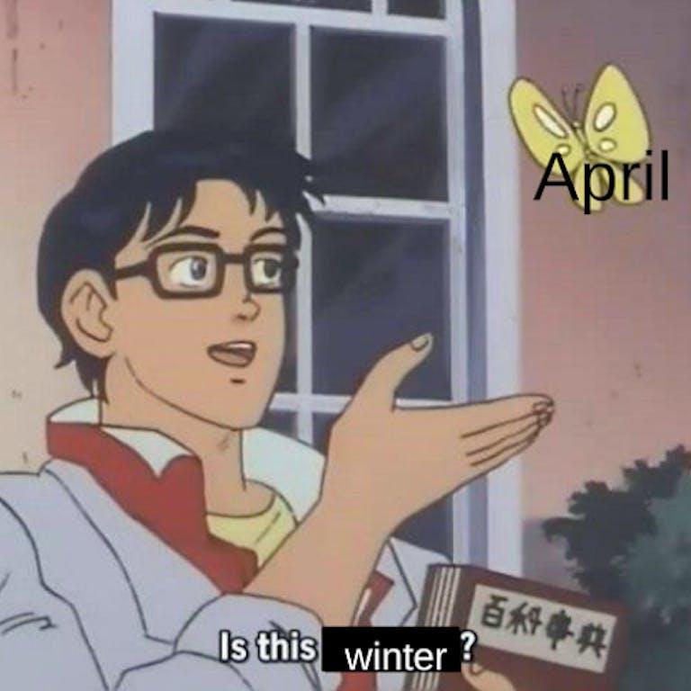 April winter butterfly meme