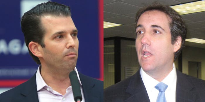Michael Cohen, President Donald Trump's long-time personal attorney, killed a story set to run in Us Weekly about an affair Donald Trump Jr. allegedly had with a contestant from Celebrity Apprentice, according to a new report.