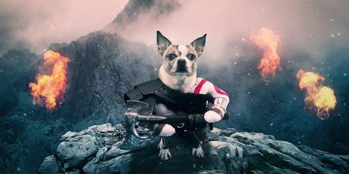 Dog of War Advertisement