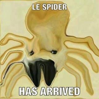 le spider doge meme