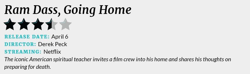 Ram Dass, Going Home review box