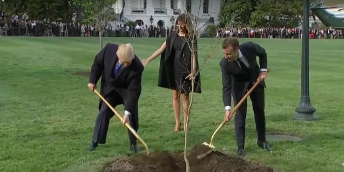 A photo of President Donald Trump and French President Emmanuel Macron shoveling dirt onto a tree quickly became a meme.