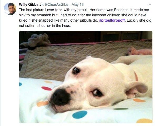 pitbull drop off twitter