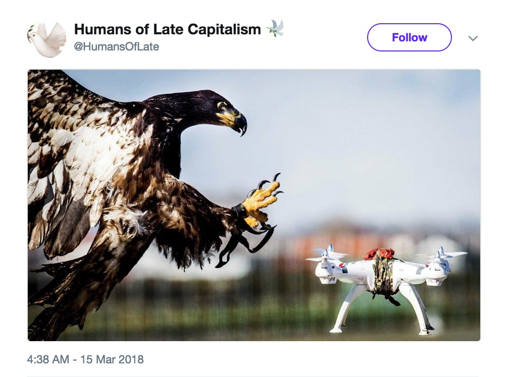 Humans of Late Capitalism
