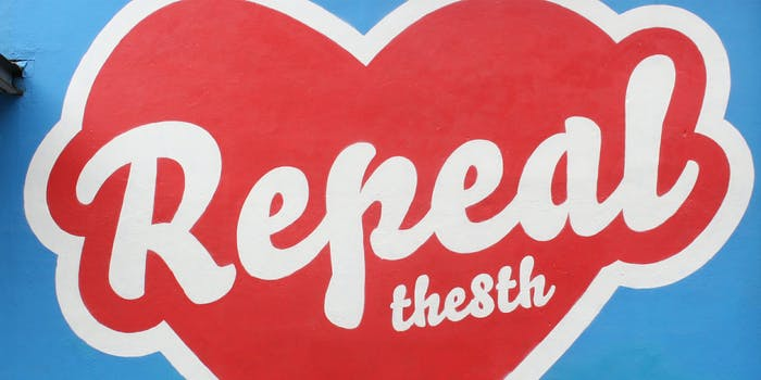 repeal the 8th mural on wall