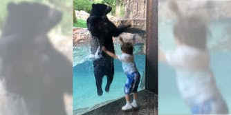 boy jumping with bear at the Nashville Zoo