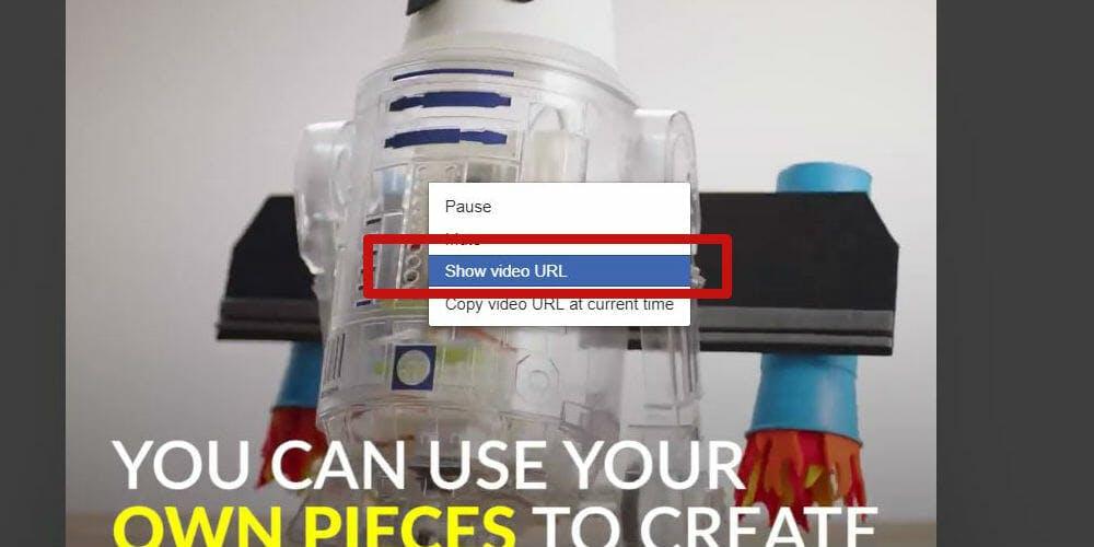 save facebook video - show video url