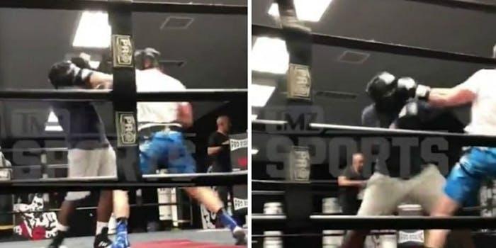 Logan Paul sparring knockdown KSI fight