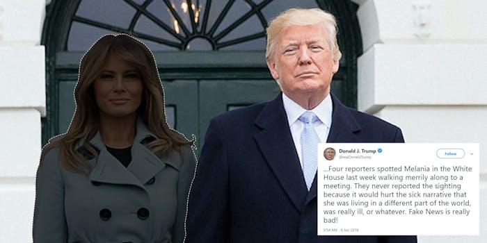 Cutout Melania and Donald Trump