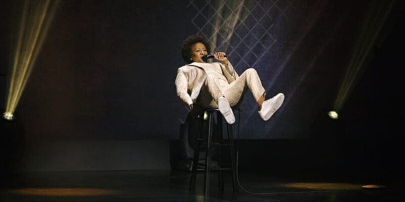 black comedy on netflix - wanda sykes not normal