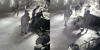 Thieves stealing a shark from the San Antonio zoo.