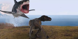 sharknado t-rex