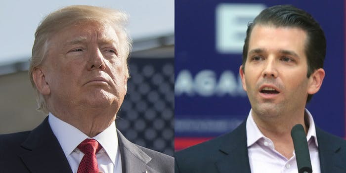 Donald Trump Jr., the son of President Donald Trump, said he believes the anonymous op-ed in the New York Times was written by a 'very low-level person.'