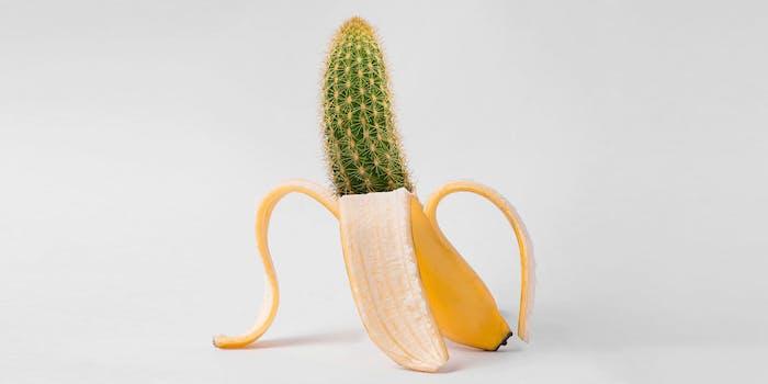 banana with cactus