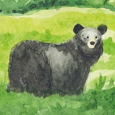 bear twitter avatar
