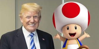 donald trump and toad from super mario brothers