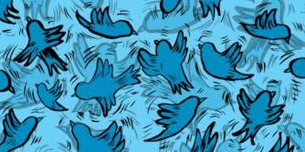 flock of twitter birds