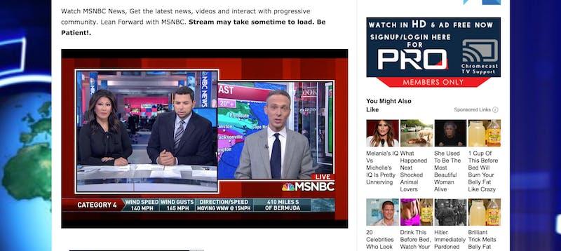 MSNBC Live Stream LiveNewsOn