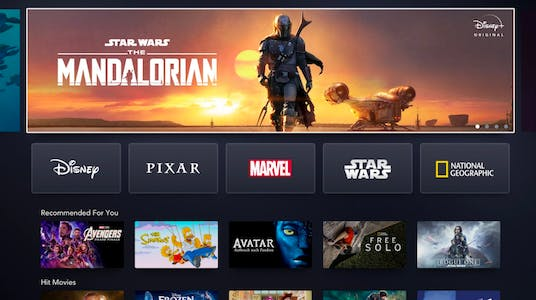 roku channels include Disney plus, shown here streaming the Mandalorian