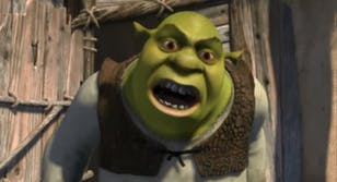 shrek what are you doing swamp
