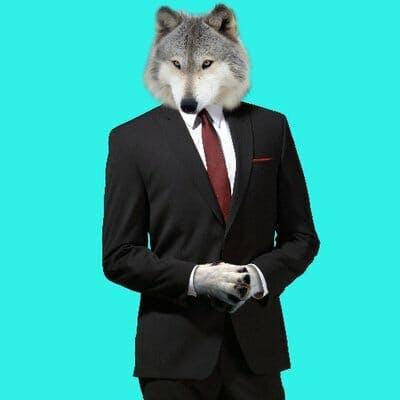 wolf twitter avatar