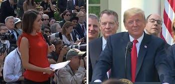 Donald Trump Cecilia Vega press conference