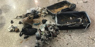 Italian police exploded a bag filled with coconuts at an airport in Rome.