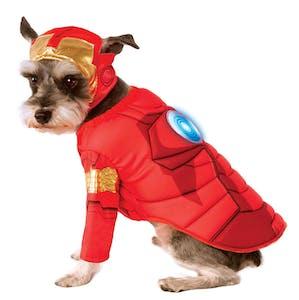 dog costume superman