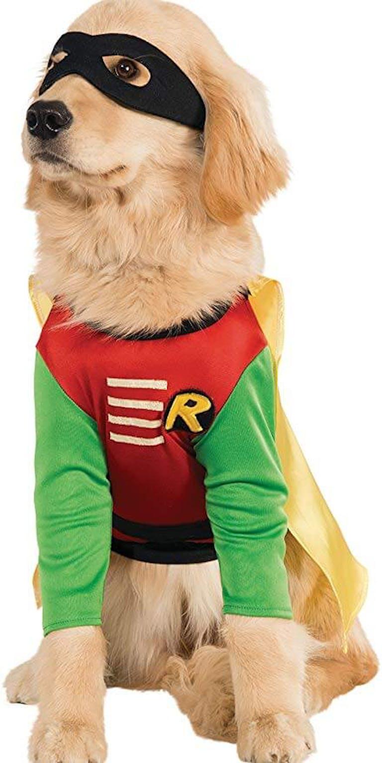 dog costumes titan