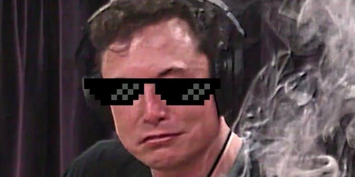 Elon Musk asks his Twitter followers for their 'dankest memes.'