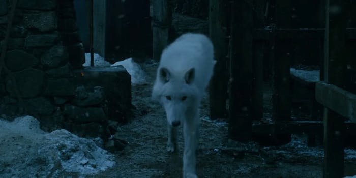 Ghost is returning in 'Game of Thrones' season 8—and fans are worried.
