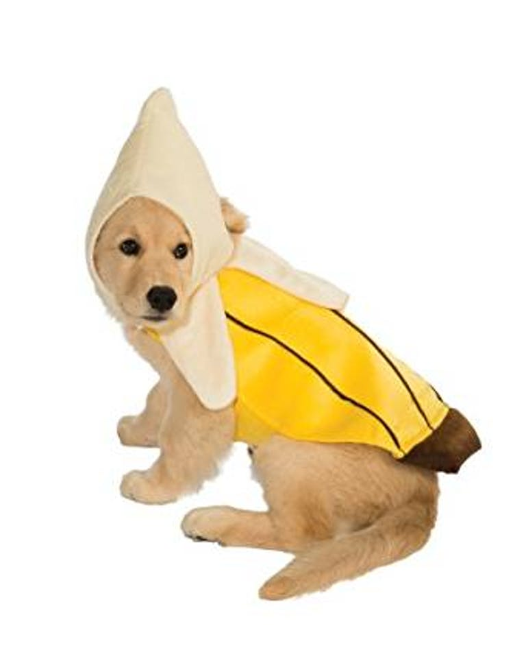 pet costume banana
