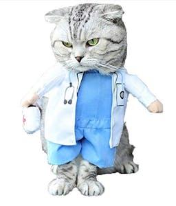 pet costumes doctor