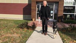 Joe Biden Gets a Rescue Dog