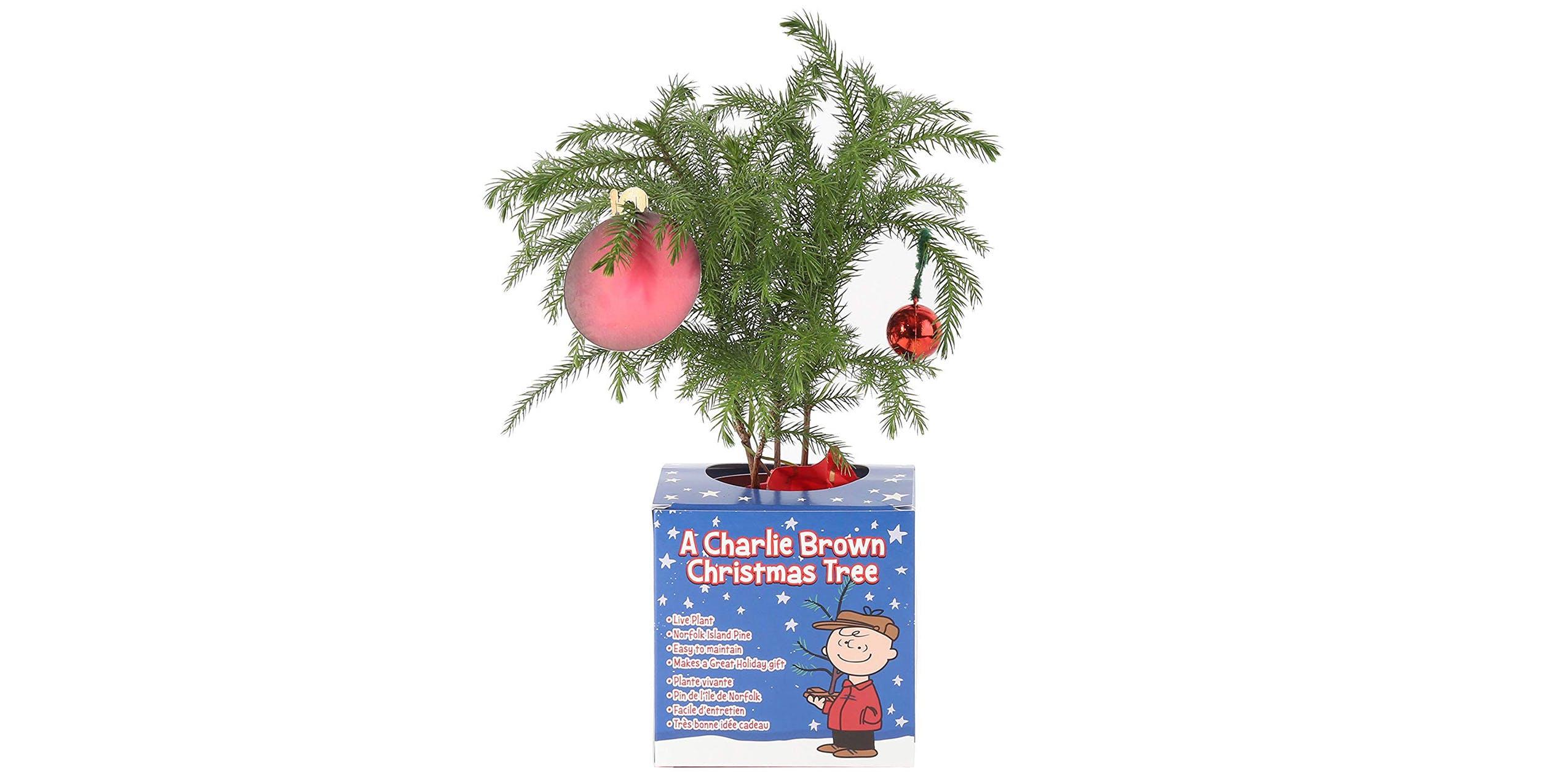 Christmas trees Charlie Brown