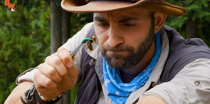 Coyote Peterson giant hornet YouTube