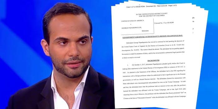 george papadopoulos sentencing plea