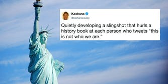 The Statue of Liberty with a 'This is not who we are' meme
