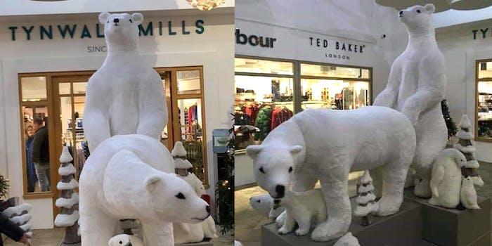 tynwald mills christmas bears