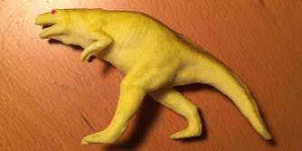 Jonny Sun's toy dinosaur trended on Twitter.